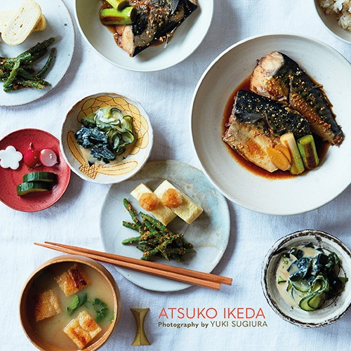 Beginners Japanese Cuisine
